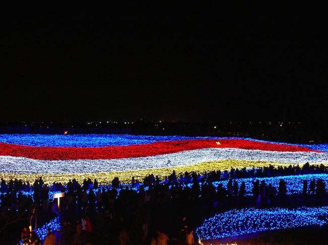Japan * Tunnel of Lights img 10