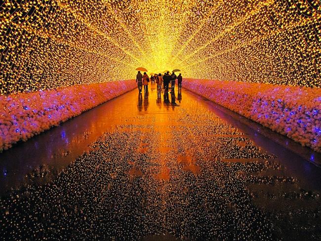 Japan * Tunnel of Lights img 21