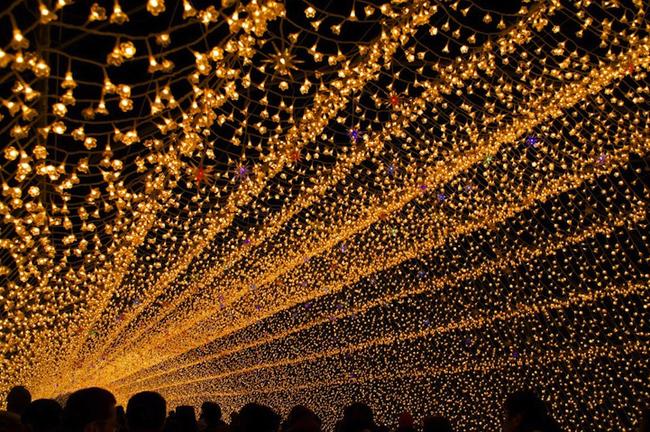 Japan * Tunnel of Lights img 3