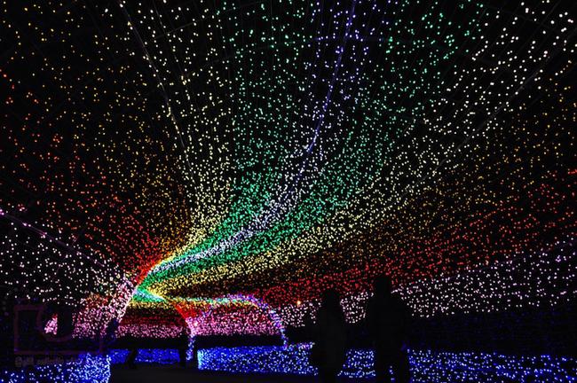 Japan * Tunnel of Lights img 5