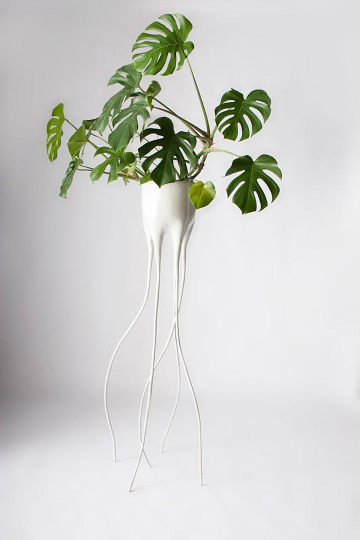 Monstera Plant Pots By Tim Van De Weerd  Monstera Plant Pots * By Tim Van De Weerd Monstera Plant Pots By Tim Van De Weerd 2