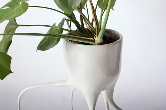 Monstera Plant Pots By Tim Van De Weerd 3  Monstera Plant Pots * By Tim Van De Weerd Monstera Plant Pots By Tim Van De Weerd 31