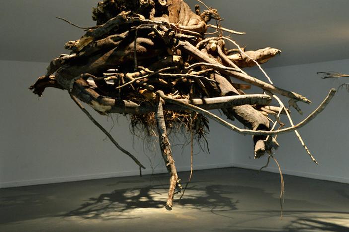 Tree Root Chandeliers By Artist Giuseppe Licari