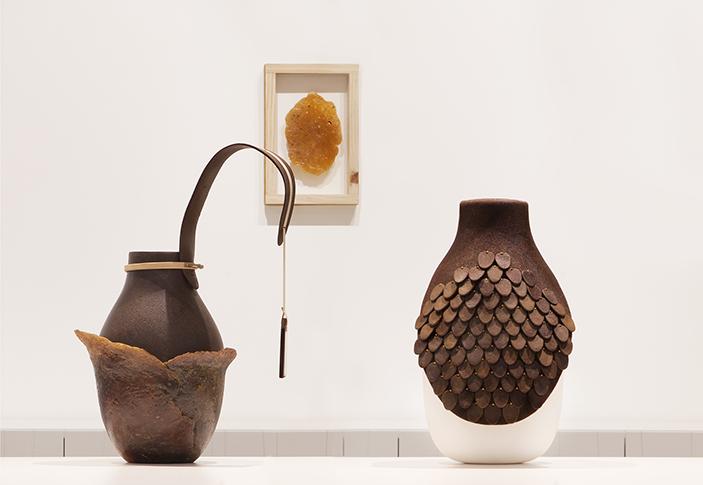 wedo-gallery_botanica-08  Studio Formafantasma * Anno Tropico wedo gallery botanica 08