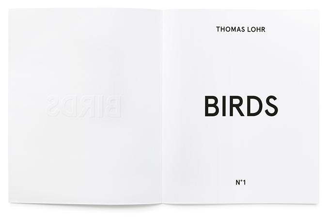 http://designgallerist.com/blog/photorealistic-portraits-cut-paper-yoo-hyun/ thomas lohr Strong Birds Details * Thomas Lohr 4a