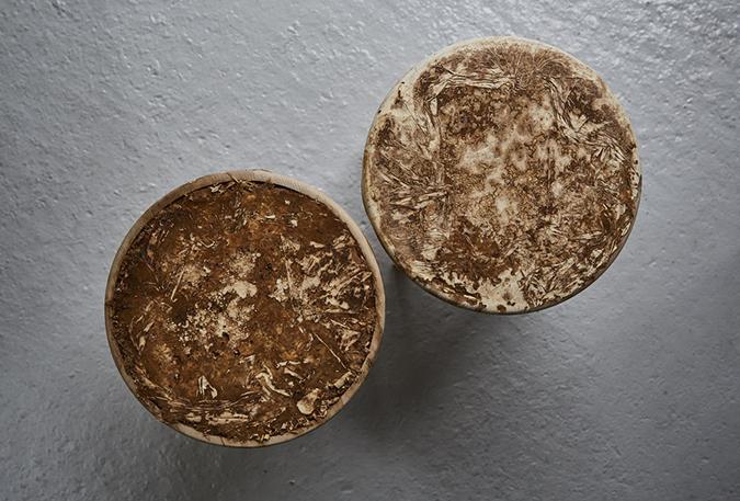 Mushroom mycelium - the unique material to suede-like furniture suede-like furniture Mushroom mycelium - the unique material to suede-like furniture dg sebastian cox ninela ivanova 5