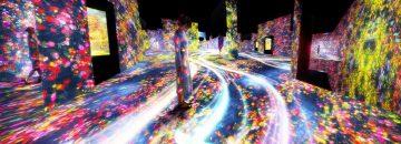 Exploring teamLab Borderless: a digital art museum in Tokyo, Japan