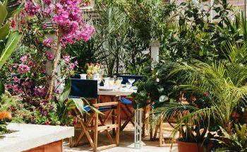 Story Telling Finesse of Derek Castiglionis Gardens