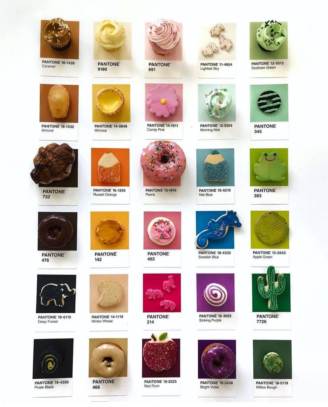 lucy litman Lucy Litman's Pantone 'Pairing' Food Cards Lucy Litman 5