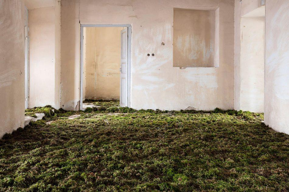 gohar Gohar Dashti's Photographic Elegy on Abandoned Houses Gohar Dashtis 3