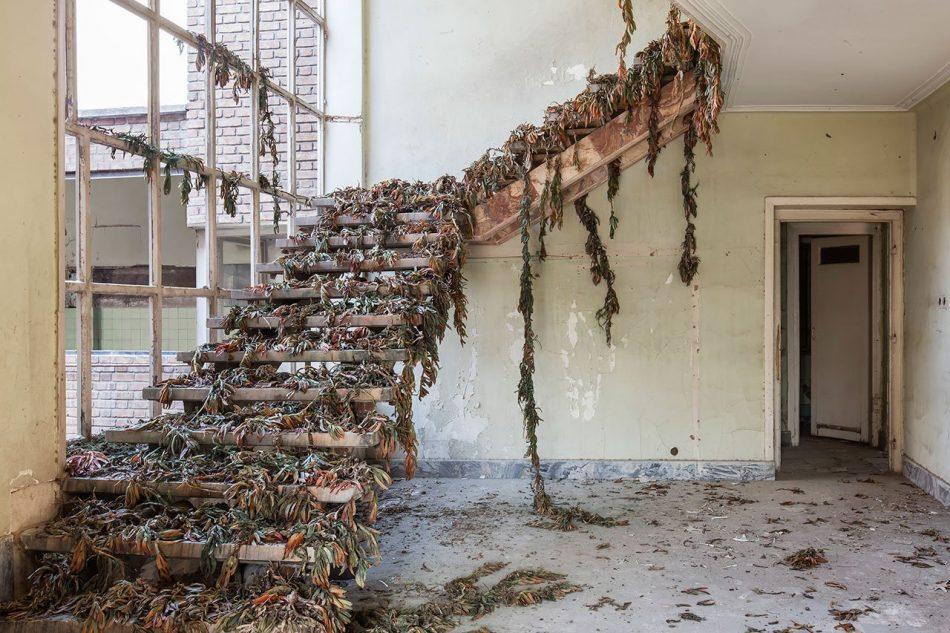gohar Gohar Dashti's Photographic Elegy on Abandoned Houses Gohar Dashtis 4