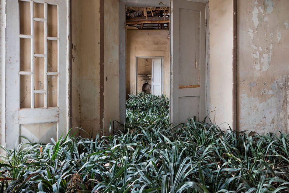 gohar Gohar Dashti's Photographic Elegy on Abandoned Houses Gohar Dashtis 7