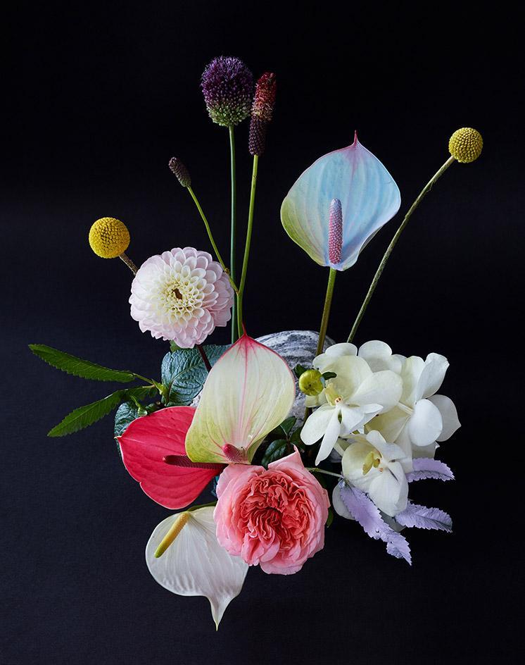 flowers Exploring the language of Flowers exploring language flowers 6