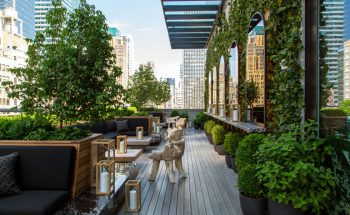 Urban Rooftop Refuge in Midtown Manhattan