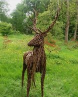 Anna and the Willow Fills Forest with Sculptures Made from Woven Rods